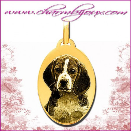 Médaille Ovale en Plaqué or 18 carats - GRAVURE PHOTO de votre Animal de compagnie et GRAVURE TEXTE